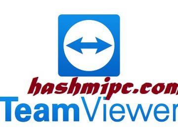 TeamViewer Crack 15.14.5 Plus License Key Latest Version 2021
